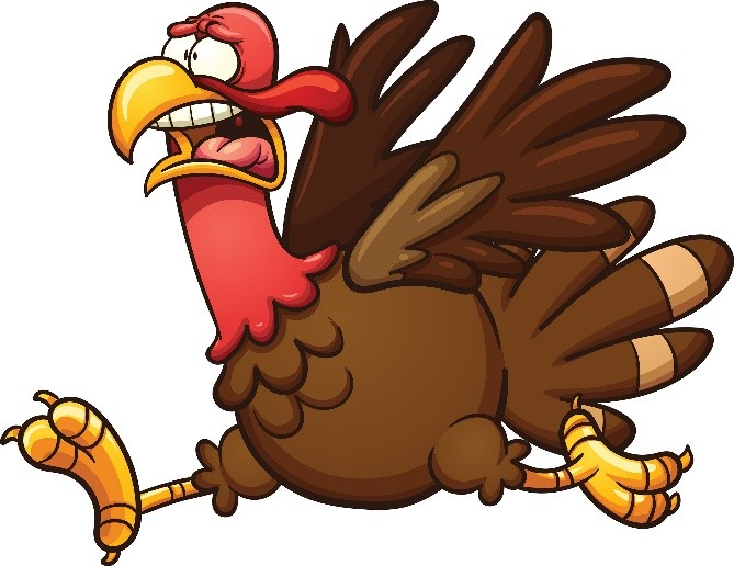 running-scared-turkey-istock